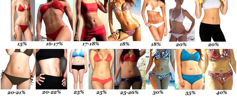Процент жировой ткани у женщин