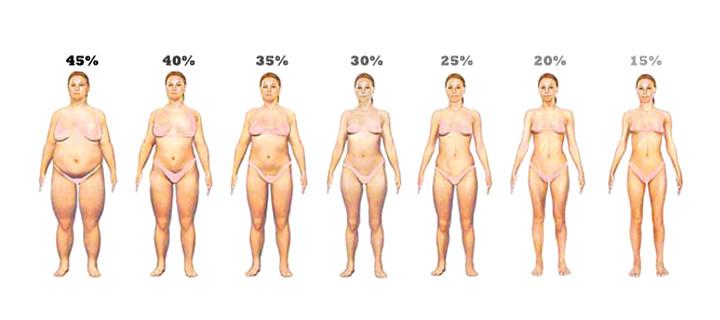 Процент жира в организме: как узнать и для чего это нужно?