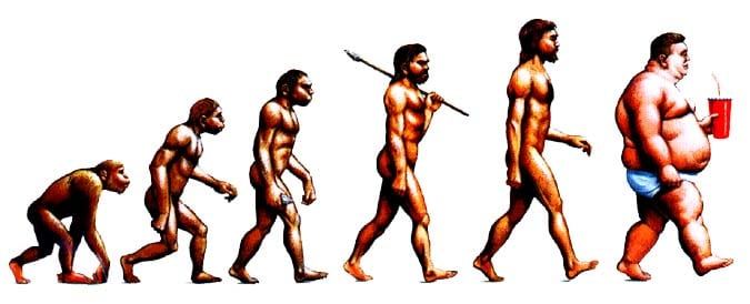 the_evolution_of_man