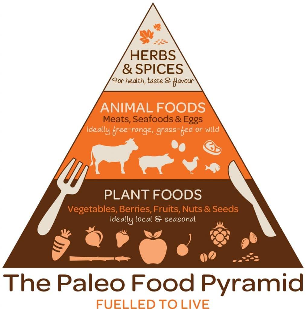 Палео-диета: за и против
