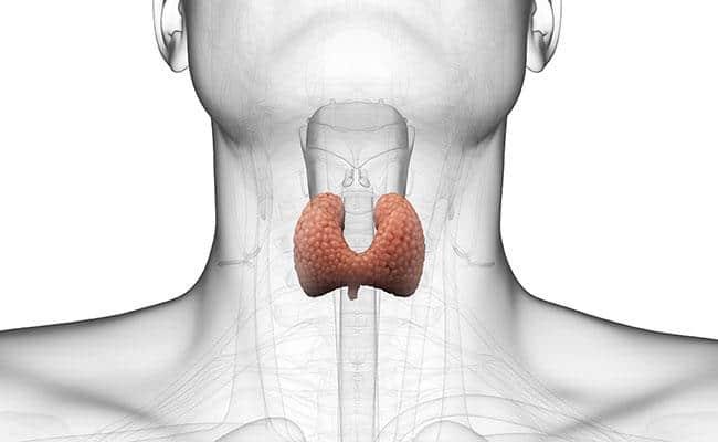 Диета при гипотиреозе щитовидной железы: меню диеты