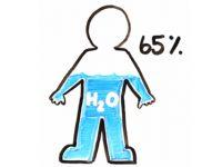ЗОЖ-тест: что вы знаете о воде и том, сколько нужно пить?