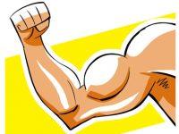 Какие упражнения можно считать вредными или бесполезными?