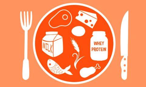 Фитнес-мифы: не съел вовремя белок — потерял все мышцы