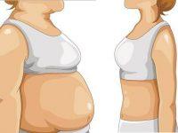 Куда девается жир, когда мы худеем?