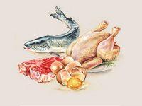 Самые частые вопросы о белке в еде: про мышцы, похудение, вред и пользу